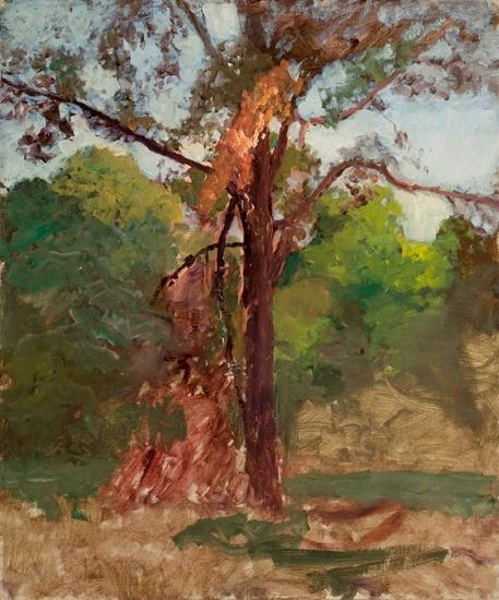 a árbol de Theodore Clement Steele (1847-1926, United States)