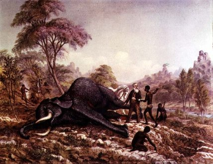 MUERTA Elefante de Thomas Baines (1820-1875, United Kingdom)