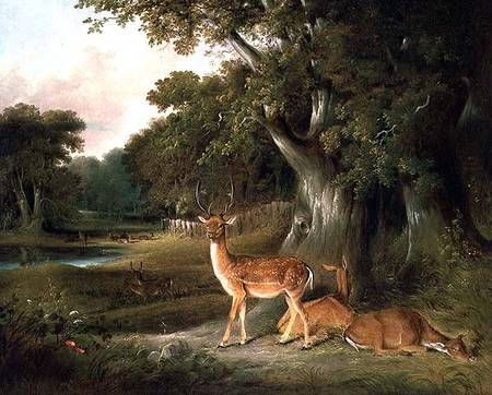 ciervo en Un  arbolado  paisaje del  de Thomas And William Daniell (1769-1837, United Kingdom)
