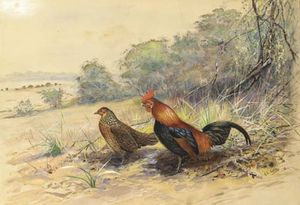 George Edward Lodge - Gallo y gallina en un paisaje