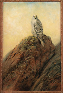 George Edward Lodge - Gyr halcón