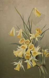 Constance Dutton Thompson - Narcisos